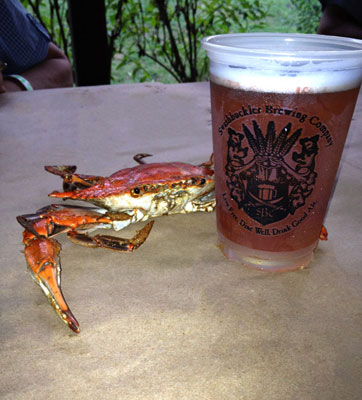 Photograph of cooked Maryland crab and glass of beer