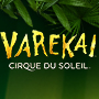 Tropical green leaves with the word VAREKAI in bright yellow letters, Cirque Du Soleil