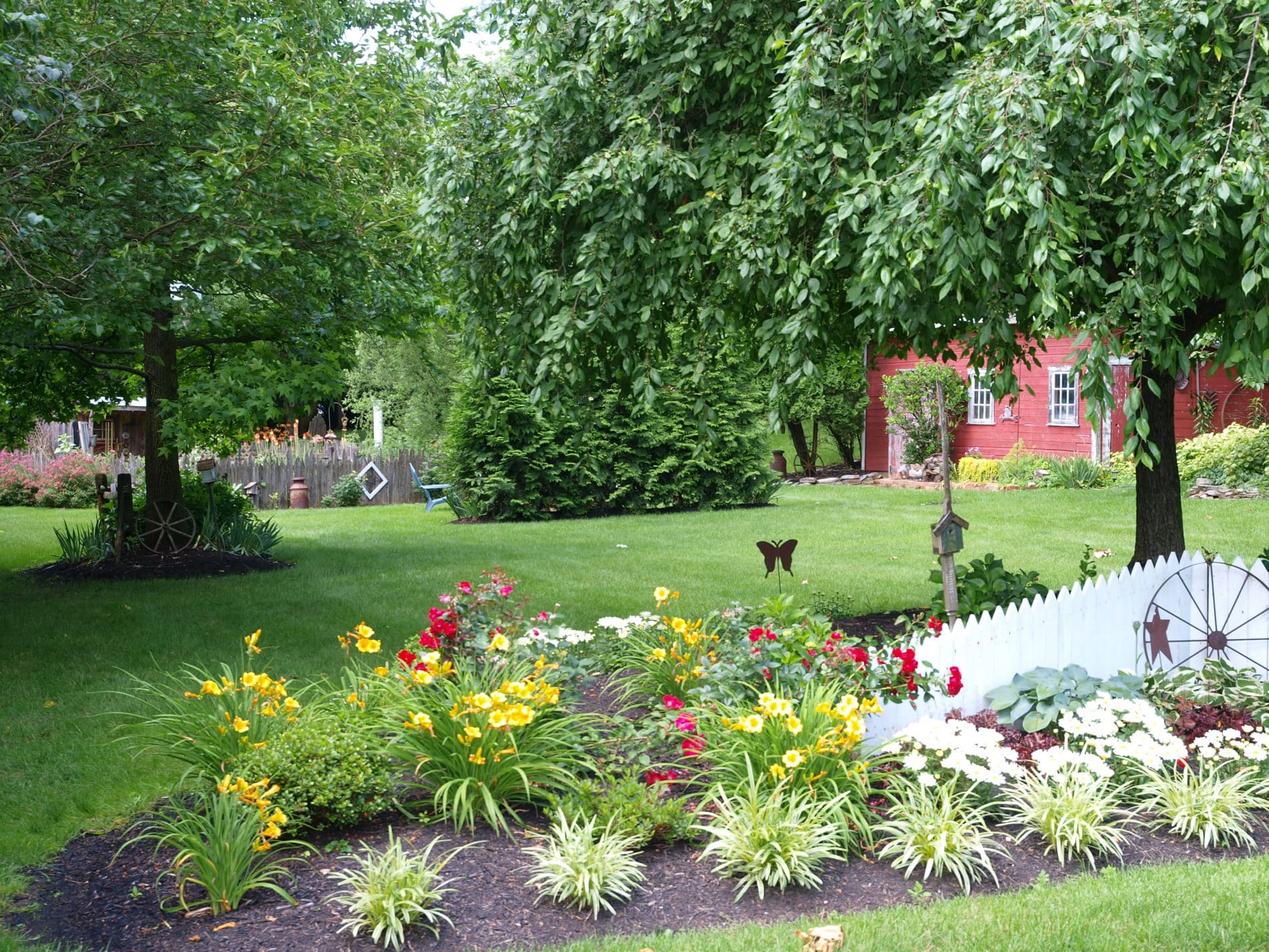 flower bed in bloom with yard and small red barn in background